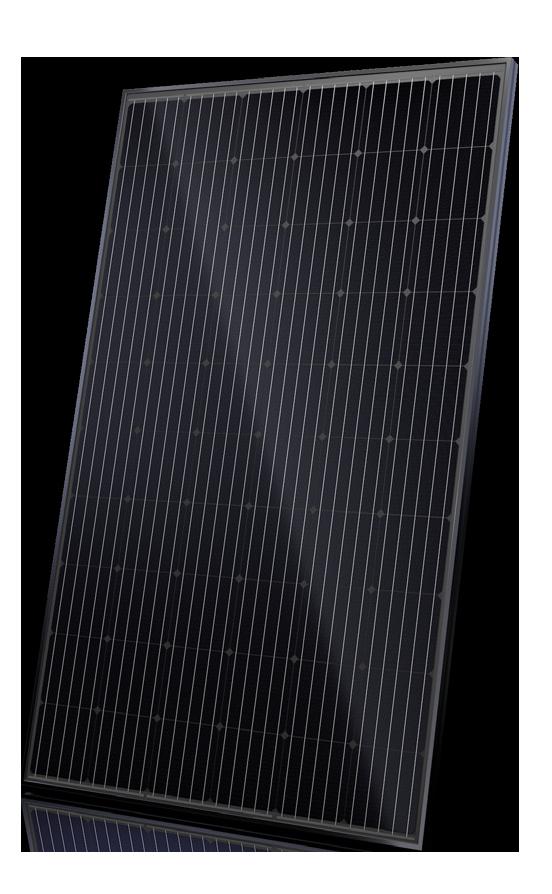 Canadian Solar SuperPower CS6K-295MS-Black 295W Mono Solar Panel