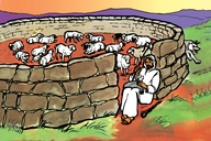 Enguli Yo Mulisani Omulotu (Picture 66. Parable of the Good Shepherd)
