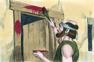 48. The Deliverance Lamb (Passover Lamb), Exodus 12:21-33