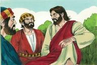 Saun Marcos 13:28 (Mark 13:28)