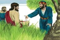 Luke 21:29
