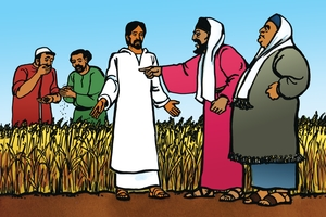 Yesu A'porithsa Okuara Dyoko [картинка 31. Disciples Pick Grain on the Sabbath]