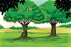The Garden of Eden, Genesis 2:4-10