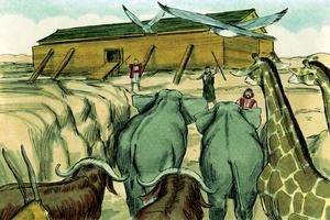 Noah and the Flood, Genesis 6:9-22