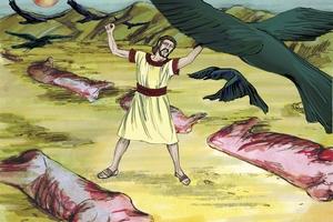 Genesis 15:5-16