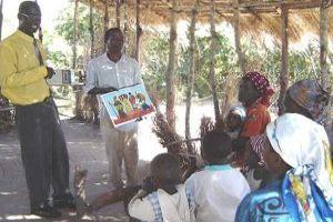 Mozambique Distribution Project