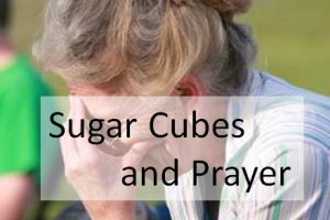 Sugar Cubes and Prayer