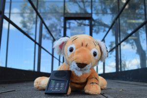 Tumi the Talking Tiger