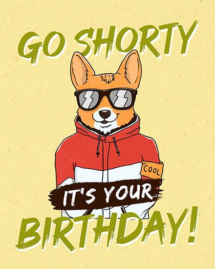 birthday card go shorty its your birthday cool corgi with sunglasses