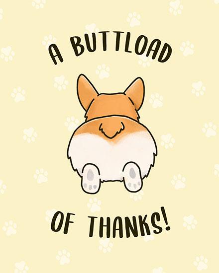 thank you card a corgi buttload of thanks