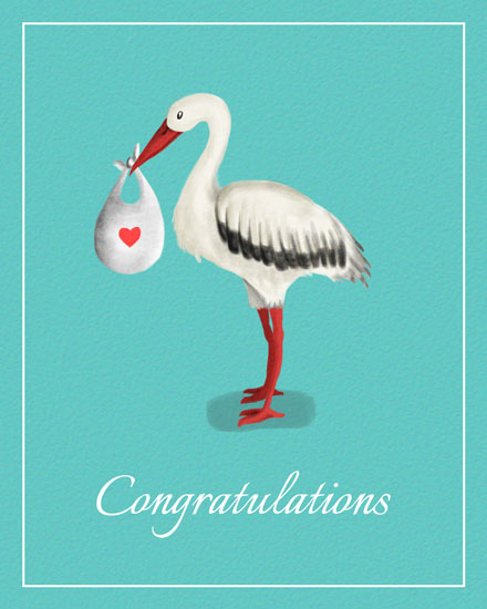 baby card standing stork