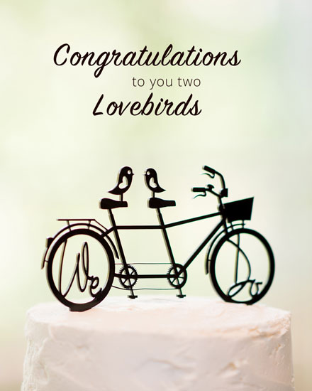 congratulations card wedding lovebirds on bicycle