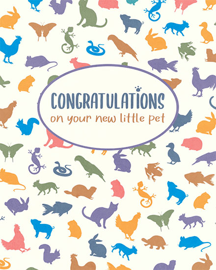 congratulations card congratulations on your new little pet
