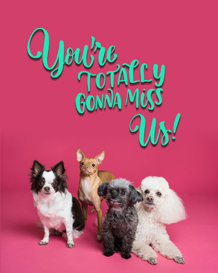 farewell card pups on pink