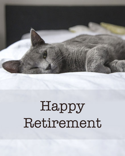 farewell card retirement resting gray cat