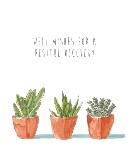 get well soon card three succulents