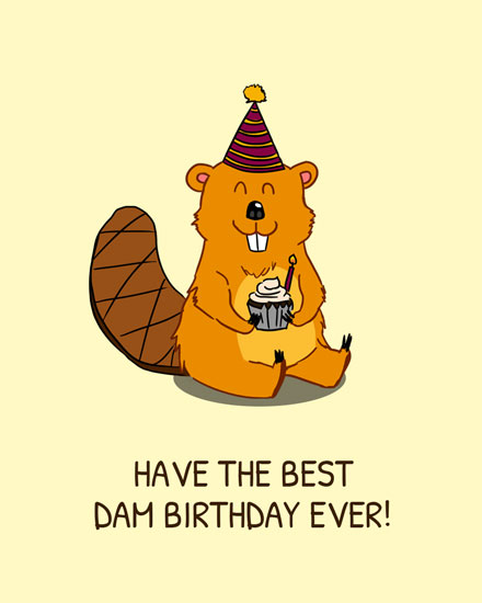 happy birthday card best dam birthday beaver