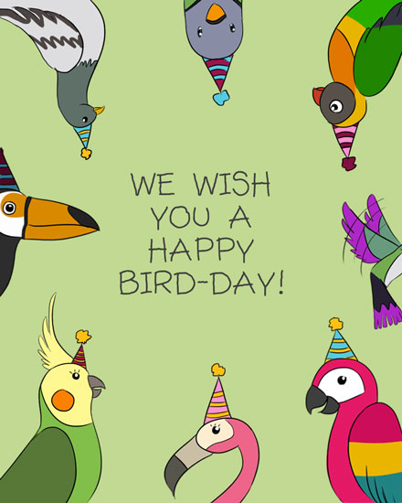 happy birthday card colorful birdday birds pun