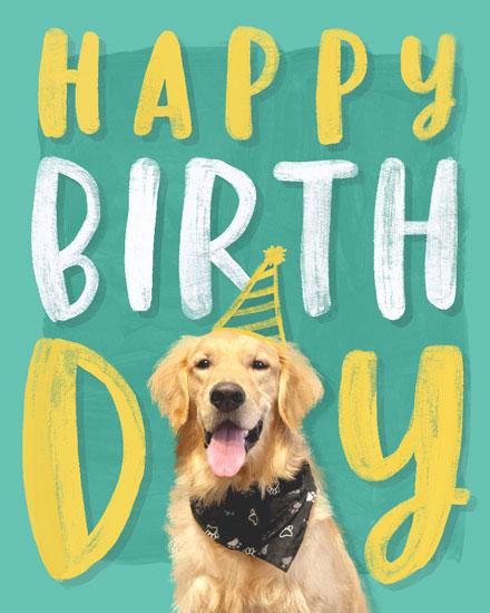 birthday card happy birthday toby dog