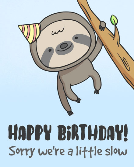 happy belated birthday slow sloth hanging in tree