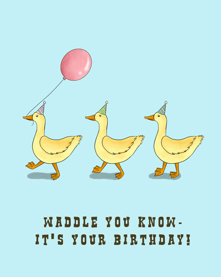 happy birthday card waddle you know its your birthday ducks