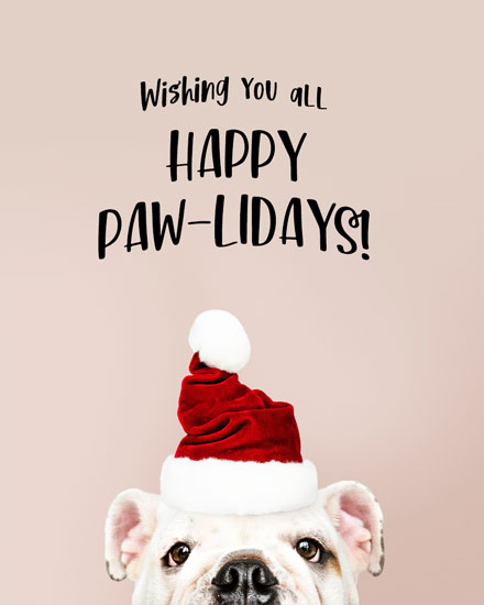 holiday card happy pawlidays bulldog