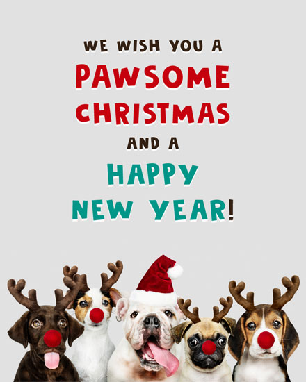 holiday card pawsome christmas dogs