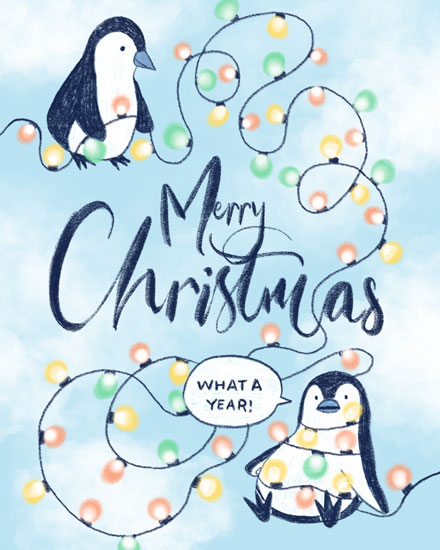 holiday card penguins christmas lights