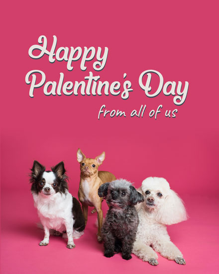 happy palentines day card puppies