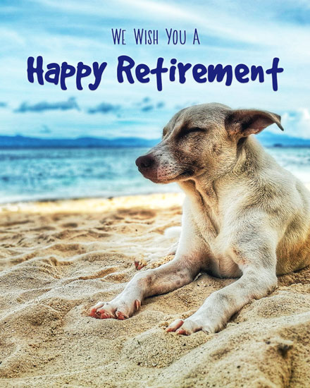 retirement card dog on beach