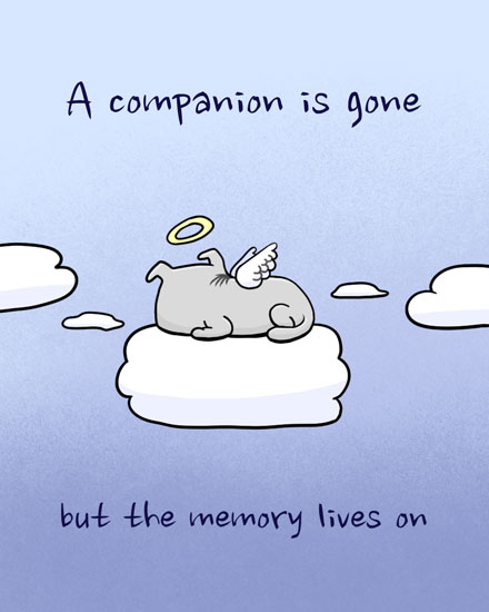 sympathy card angel dog on cloud