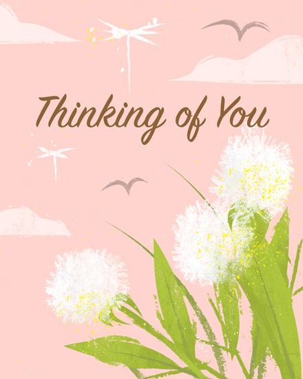 sympathy card dandelions