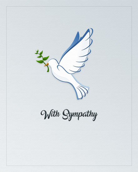 sympathy card dove carrying branch