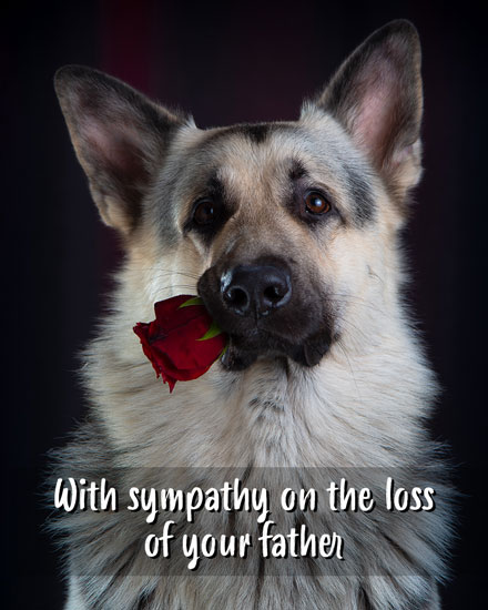 sympathy card with sympathy on the loss of your father