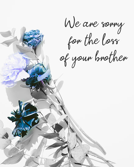 sympathy card we are sorry for the loss of your brother