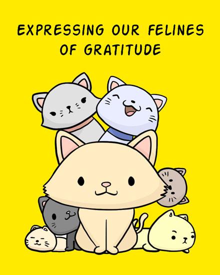 thank you card felines of gratitude