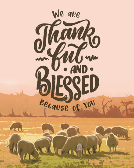 thank you card blessed sheep