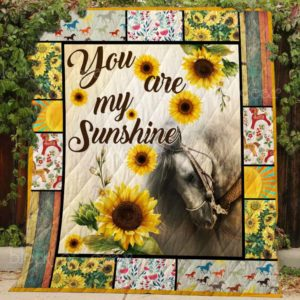 You Are My Sunshine Quilt Blanket