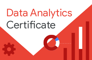 Learn the skills to collect, transform and organize data
