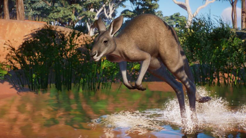planet-zoo-zavita-do-australie