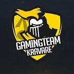 Gaming team Kravaře