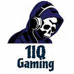 1IQ Gaming
