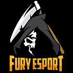 FURY ESPORTS