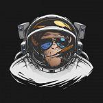 Space_Monkeys