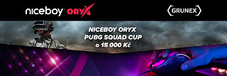 niceboy-oryx-pubg-squad-cup-grand-finale