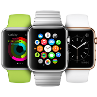 Apple Watch in Stainless Steel Case
