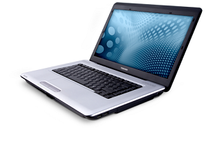 Toshiba Satellite L450, L455 Series