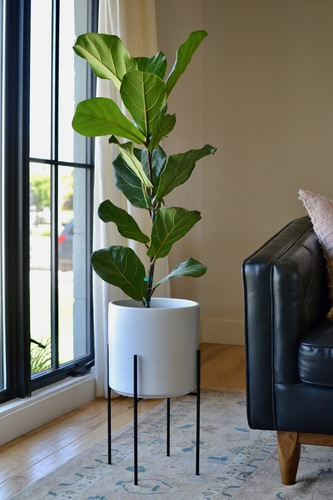 Mid-Century Modern White Planter with Black Plant Stand