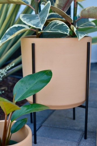 Mid-Century Modern Terracotta Planter with Black Plant Stand