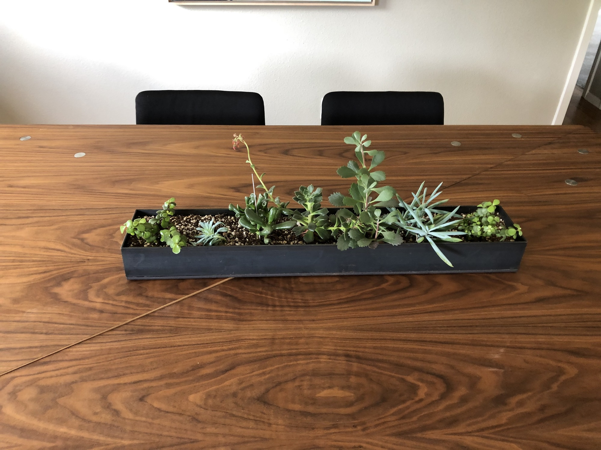 Patinated Steel Planter